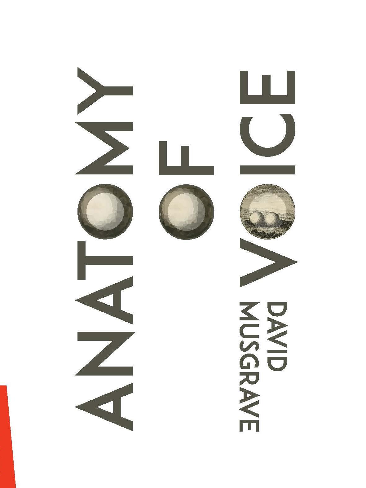 Anatomy Of Voice David Musgrave Gloriasmh Press